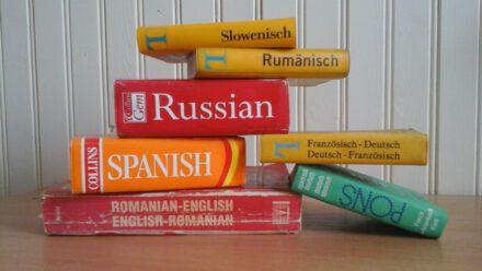 Zdobycie zdolności językowych, czy szeroko pojęta edukacja?